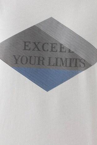 Mavi % 100 Pamuk Baskılı Bisiklet Yaka Erkek T Shirt 066545-33507 AÇIK GRİ