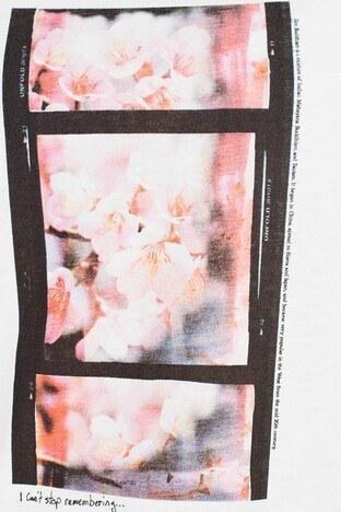 Vero Moda Vmjannahfranis Bayan T Shirt 10227807C EKRU